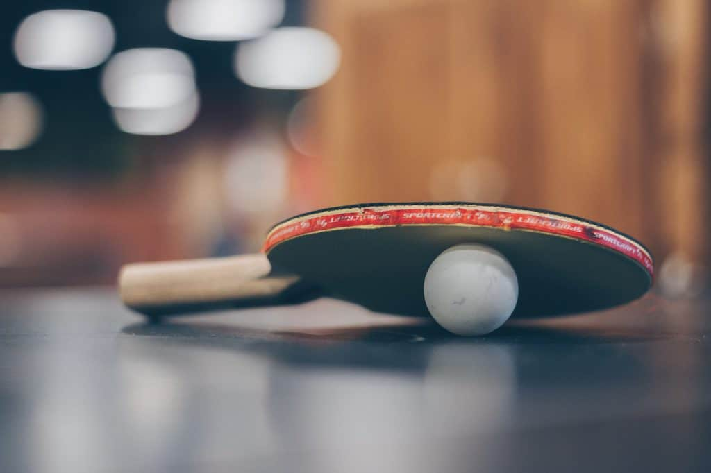 The 10 Best Ping Pong Paddles In 2021 Pingpongruler