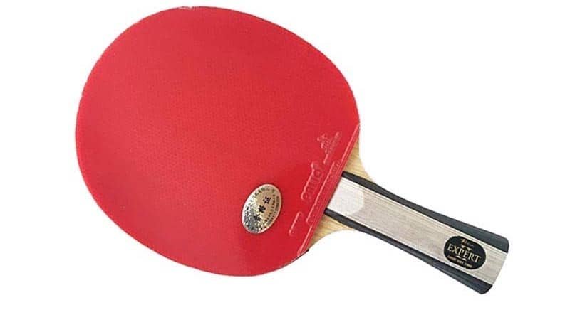 how to buy buy cheap order Palio Expert 2 Review | Ping Pong Ruler